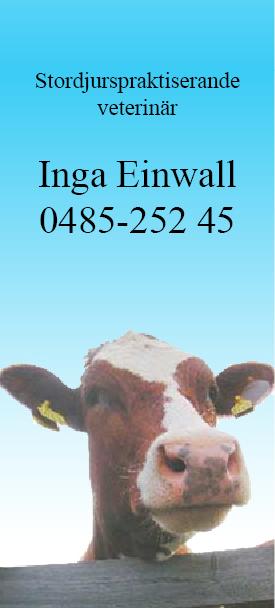 Stordjurspraktiserande veterinär Inga Einwall